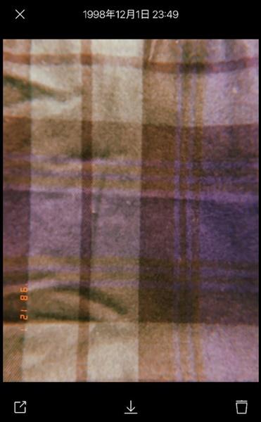 フィルム19