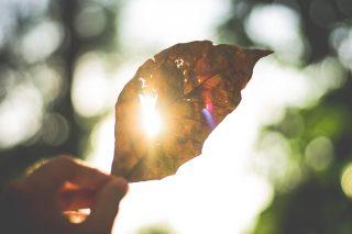【iPhone】画面の明るさを調整する方法